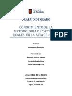 Opciones Reales en la Alta Gerencia - Pedro Maria Ángel Díaz
