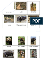 Animals of the 7 Continents