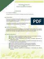 SCHOOLHOUSE - CONTEÚDOS PROGRAMÁTICOS