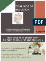 the practical side of self regulation edited-2