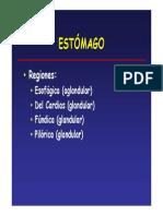 Digestivo 2