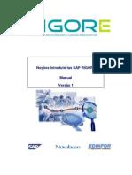 Manual Nocoes Introdutorias SAP RIGORE