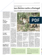 Lince Portugal