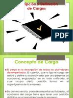 Análisis y Descripción de Cargo 2011