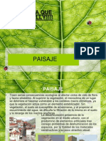paisaje-urbano-1201028124411994-5