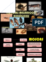2. Vectores Mecánicos y Biológicos