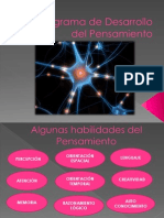 Programa de Desarrollo Del Pensamiento