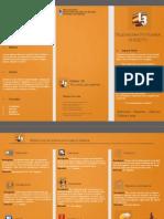 ob_bf08b3_triptico-para-canal-13.pdf