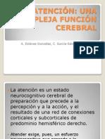 La atención neurofisiología expo omar