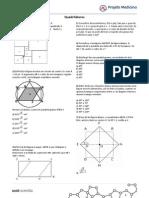 Matematica Geometria Plana Exercicios Gabarito Quadrilateros