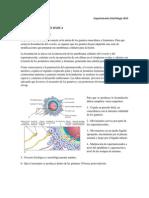 Apunte II Fecundacion%2c Segmentacion2014