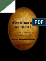 Concilios de Un Poeta.