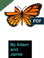 Butterflies-Jamie & Adam