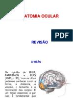 REVISÃO Anatomia e fisiologia do olho