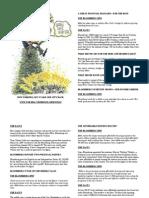 Bloomberg Leaflet
