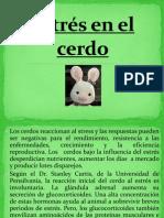 Estrés en el cerdo