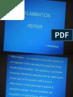 Pathanatomy Lecture - 08 Inflammation Repair