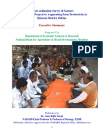 Balasore Baseline Study-Project Report- Executive Summary