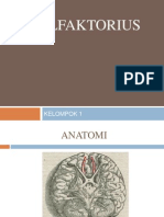Nervus Olfaktorius