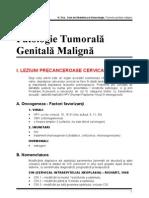 Cap.15 - T. Maligne
