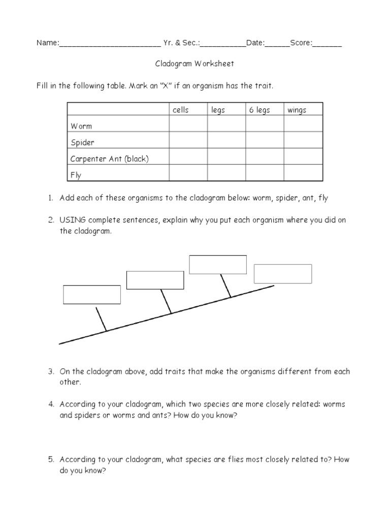 Worksheets Cladogram Worksheet Answers cladogram worksheet