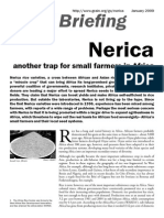 Grain 111 Nerica Another Trap for Small Farmers in Africa