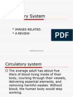 Chapter1circulatory System