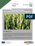 Hojas Informativas Enfermedades Cereales Invierno 2004