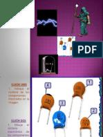 1P Reconocimiento de Componentes 2014