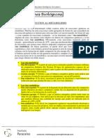 oxidaciones biológicas (1er parte)