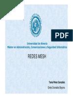 PFM Mesh Presentacion
