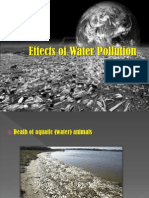 Effects of Water Pollution.pptx