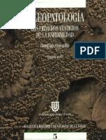 Campillo Libro II Def.