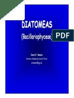 12. Diatomeas