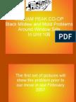 William Peak Co-Op