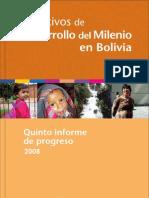 Quinto informe de progreso de los Objetivos de Desarrollo del Milenio en Bolivia 2008