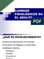 CAMBIOS FISIOLÓGICOS EN EL ADULTO