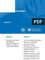 ppt. 1 Dizabilitate (3)