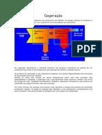Texto Didático sobre Cogeração.pdf