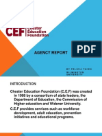 agency report - c e f presentation