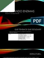 Exposicion Enzimas Para Giss (Semiterminada)