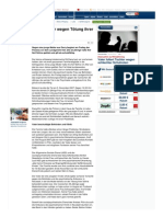 Strahlenfolter Stalking - TI - MKUltra 4 Kiel - Mutter wegen Tötung ihrer fünf Söhne vor Gericht - Focus.de vom 24.06.08