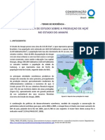 TDR_Estudo Açaí_Amapá_final