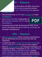 SNC - Tumores 2011