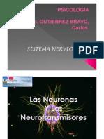 neurona.pdf