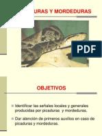 10. Picaduras y Mordeduras