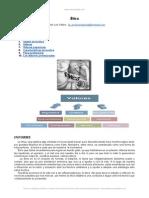 informe-etica.doc
