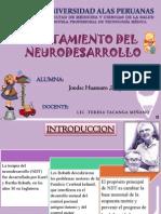 NDT - Tto Del Neutodesarrollo - LESLY JONDEC