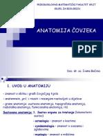 1. Uvod u Anatomiju, Osteologia - Kosti Glave