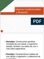 Conceptos y Mutaciones